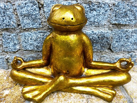grenouille meditation stress